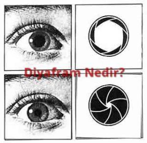 Diyafram Göz