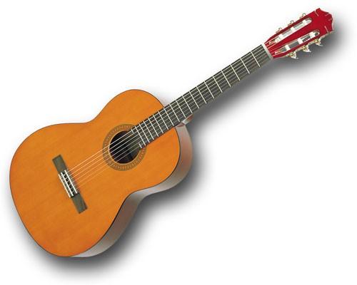 gitar almak